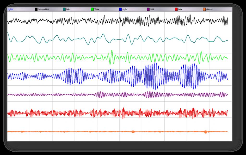 Rytmy EEG